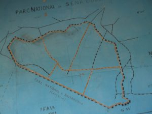A map of Sena Oura National Park. Below it borders on Bouba Ndjida National Park in Cameroon.