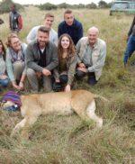 Nieuw succes voor Nairobi Lion Project