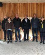 Meeting in Givskud Zoo